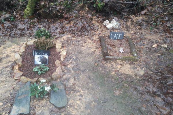 Hector et Camel, deux chiens enterrés à Douar Eñvor