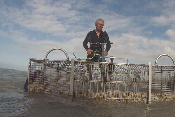 Rona Le Corre, pêcheur de tellines à Tréguennec, dans la baie d'Audierne (29)