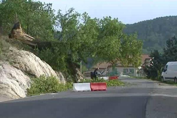 A Mercuer, un immense chêne déraciné s'est abattu sur la route sans faire de blessé.
