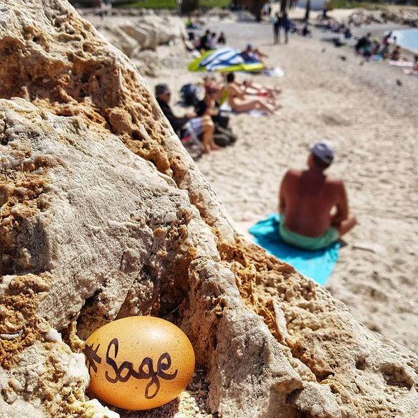 Un oeuf à mot doux caché sur la plage de Borely.