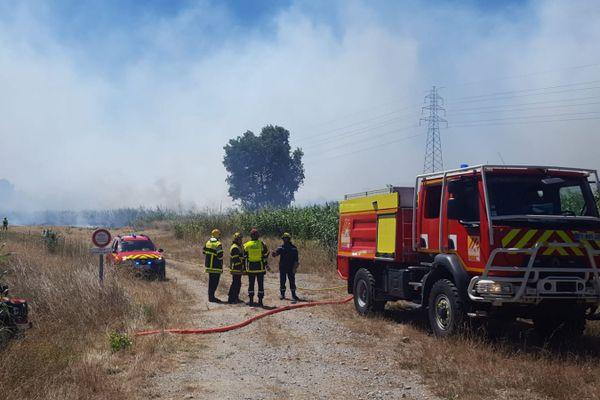 Un incendie s'est déclaré aux alentours de 10 heures, dans une déchetterie de Saint-Estève, près de Perpignan, dans les Pyrénées-Orientales, brûlant plusieurs hectares de végétation. / 7 juillet 2020