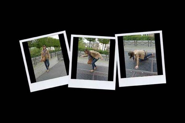 """Le concours-photos """"Et merde"""" est ouvert jusqu'au 28 janvier 2013"""