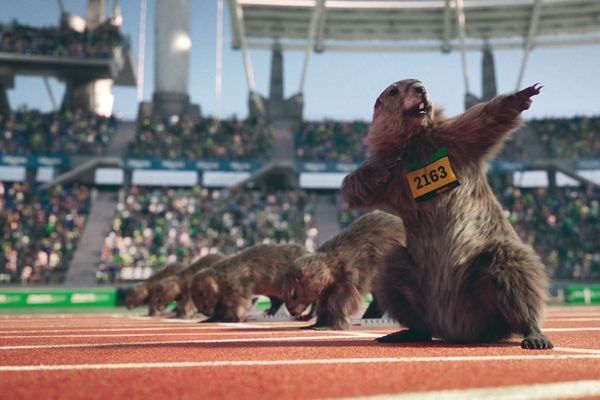Les marmottes au stade avec l'imitation du désormais célèbre geste de victoire d'Usain Bolt