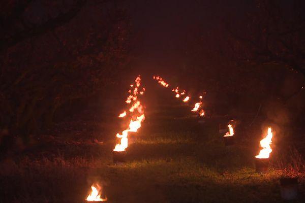 """L'allumage de ces """"bougies"""" coûte 200€ par heure et par hectare. - Jonquières-Saint-Vincent (Gard) - 24 mars 2021."""
