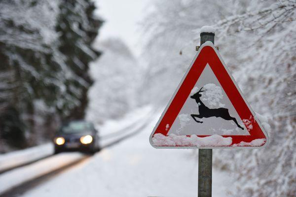 Il a déjà neigé plusieurs fois dans les Ardennes cet hiver (photo janvier 2021)