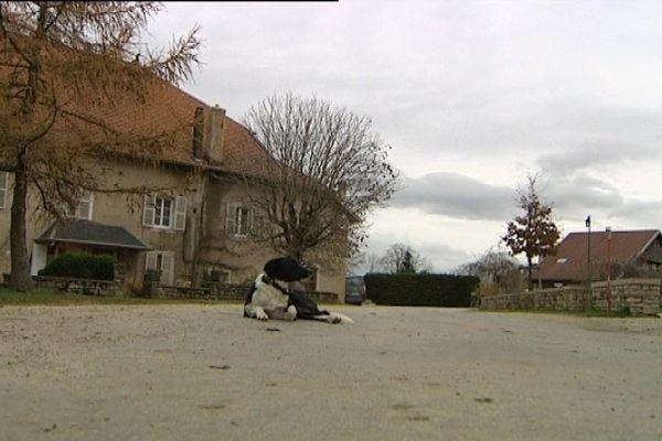 Deux tiers des visiteurs du Musée Courbet d'Ornans poursuivent leur périple sur les traces de l'artiste en se rendant à la ferme de Flagey, berceau de la famille Courbet.