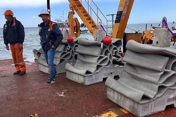 """Agde (Hérault) : 32 récifs imprimés en 3D """"XReef"""" immergés pour maintenir les bouées de surface - mai 2019."""