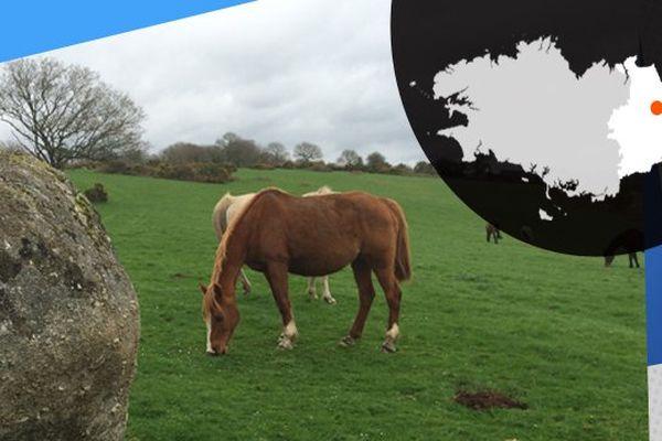 Se balader à cheval, un bon moyen de découvrir de jolis coins