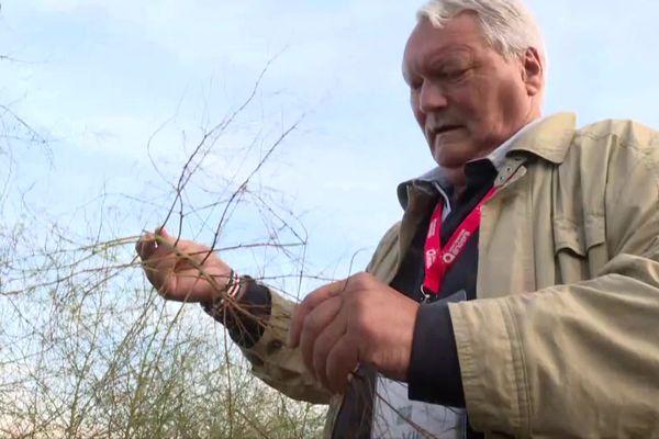 Christian Befve est le meilleur conseiller technique mondial pour les asperges.
