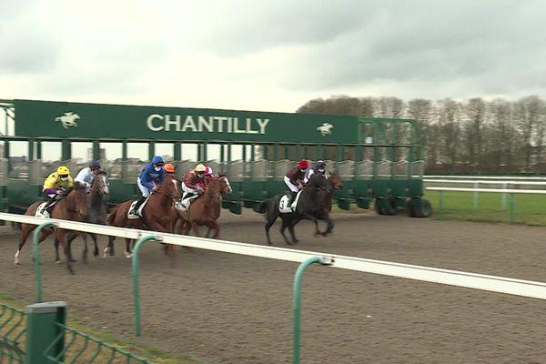 Des chevaux dopés ont participé à pas moins de 31 courses.