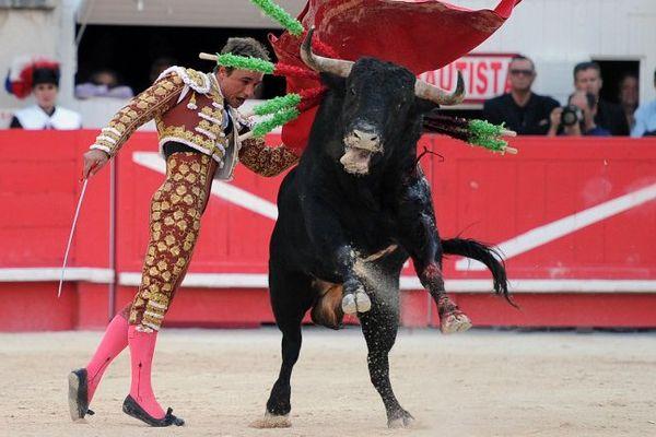 Illustration : le matador Juan Bautista dans les arènes de Nîmes, pendant la Feria de la Pentecôte, le 25 mai 2015.
