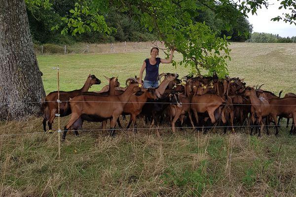 Anne Mèche, fromagère de la chèvrerie du Chêne Beunard. Voivres-lès-Le-Mans (Sarthe)