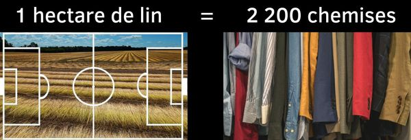 Le lin produit sur un hectare (= un grand terrain de football) permet de fabriquer 2 200 chemises