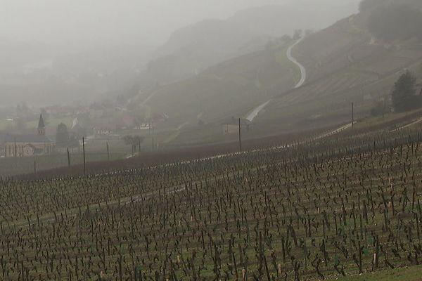 Avec la fermeture des restaurants et des stations, les viticulteurs savoyards ont du mal à écouler leurs stocks de vin.