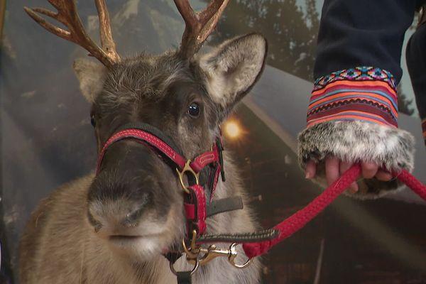 Les rennes ont une dérogation au couvre-feu pour la soirée du 24 décembre.