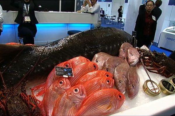 Les travées du Seafood