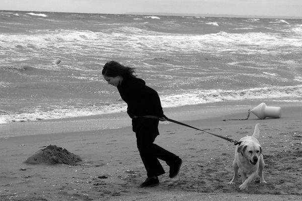 Le flux d'Ouest perturbé occasionnera un coup de vent sur le littoral normand ce samedi...