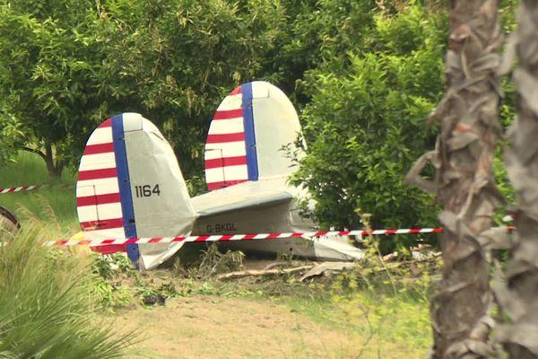 La queue de l'avion, qui s'est écrasé au coeur des plantations des environs de Torra Vescovato.