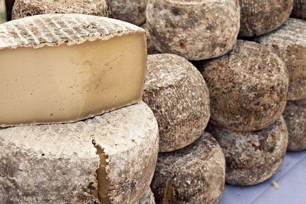 La tome de Sartène, l'un des fromages familiers des marchés et foires de la Corse.