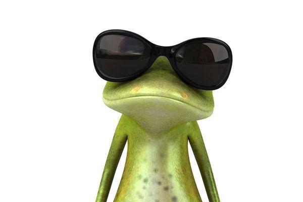Quuuoi, nous sommes en novembre ?!?! Grenouille avec des lunettes