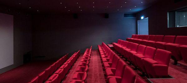 La salle de projection peut accueillir 80 personnes, professionnels et grand public.