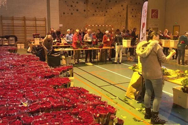 """Des milliers de roses ont été préparées au Puy-en-Velay pour l'opération """"une rose un espoir"""""""