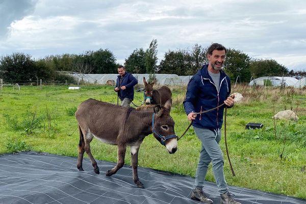 les ânes du champ des comestibles avec Vincent Chatelain