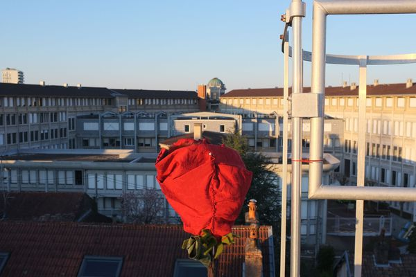 Elle se dresse sur un toit de Besançon, une rose en hommage aux soignants.