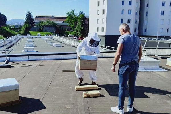 L'installation des 4 ruches, fin mai sur le toit de la gendarmerie de la Loire