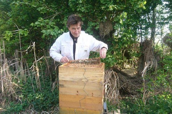 Pierre Stephan, apiculteur professionnel bio, à Lichtenberg dans les Vosges du Nord