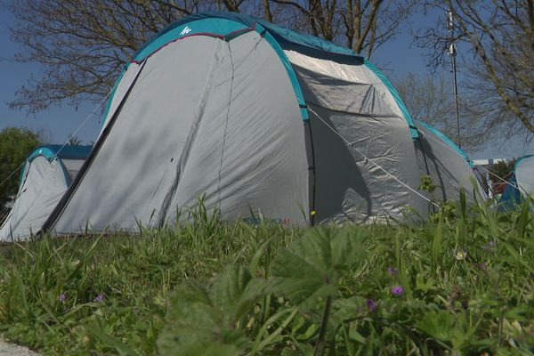 Le camping du Soleil accueille une quinzaine de SDF avec des chiens