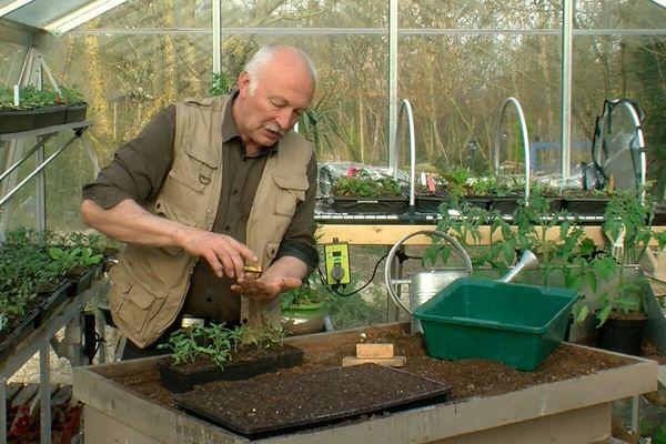 L'idéal est de préparer ses plants, à l'abri.