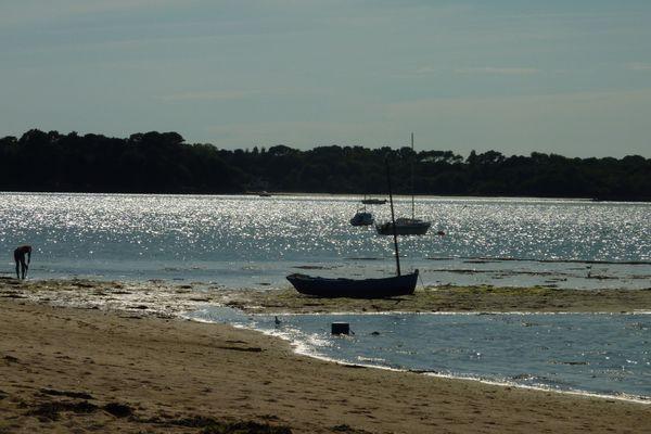 Sur l'île Tudy