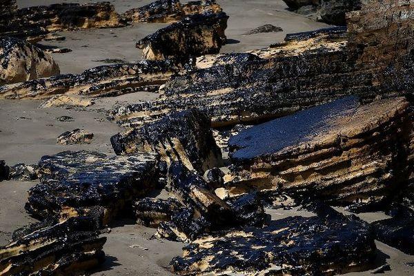 ILLUSTRATION - Menace de marée noire sur la Riviera italienne et la Côte d'Azur