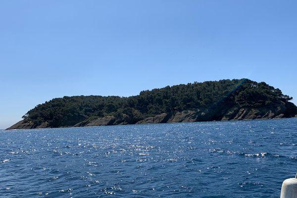 L'île verte est la seule île boisée des Bouches-du-Rhône, d'où son nom.