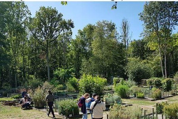 """Sortie à L'abbaye de Vauclair en """"cours d'Herbologie"""", rencontre avec un botaniste et un pharmacien."""