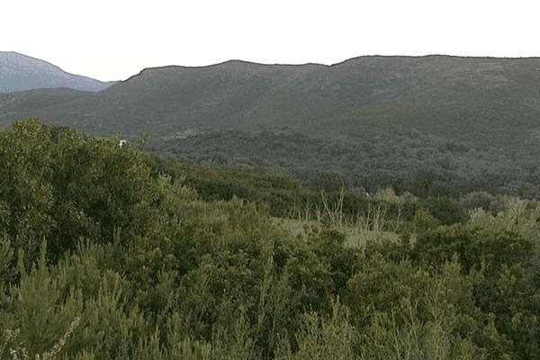 L'AFP a été annulée le 2 décembre dernier après un recours d'un propriétaire foncier de cette commune du cap Corse.