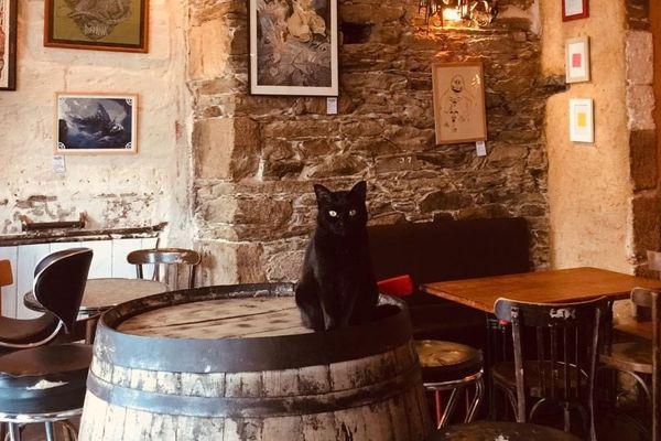 Même fermé, le Chat Noir ne dort jamais...