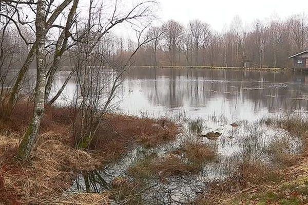 Le plateau des 1000 étangs en Haute-Saône