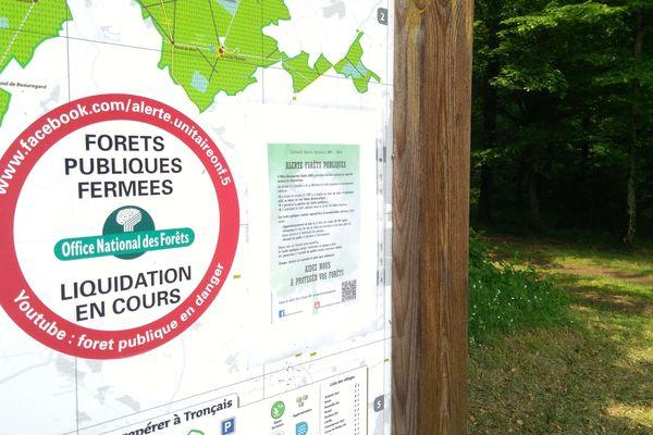 Les agents de l'ONF de Tronçais redoutent la transformation de la forêt en usine à bois