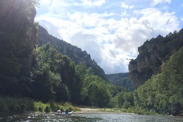 Quand le soleil fait son apparition, la nature montre son plus beau visage, en plein milieu des gorges du Tarn.