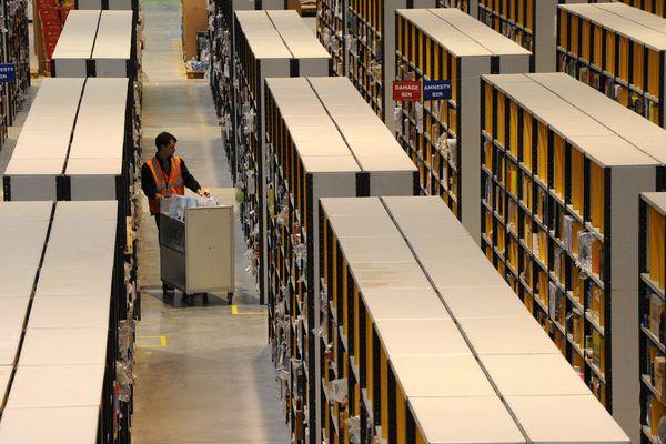 L'entrepôt sera la plus grande plateforme logistique de France. Il pourrait être utilisé par l'entreprise Amazon, en plus de ce centre qu'elle utilise à Chalon-su-Saône, et devrait créer 1 300 emplois.