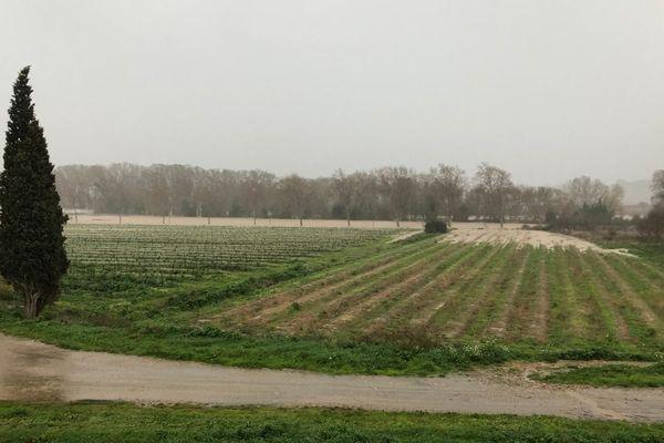 Les trois routes départementales menant à Puichéric sont bloquées, la RD610, la RD72 et la RD111, l'accès au village est impossible - 23 janvier 2020
