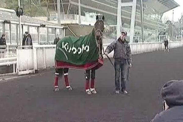 Ready Cash retrouve Vincennes, 26 janvier 2013