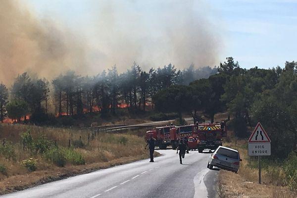 Fabrègues (Hérault) - feu dans le massif de la Gardiole - 18 juillet 2019.