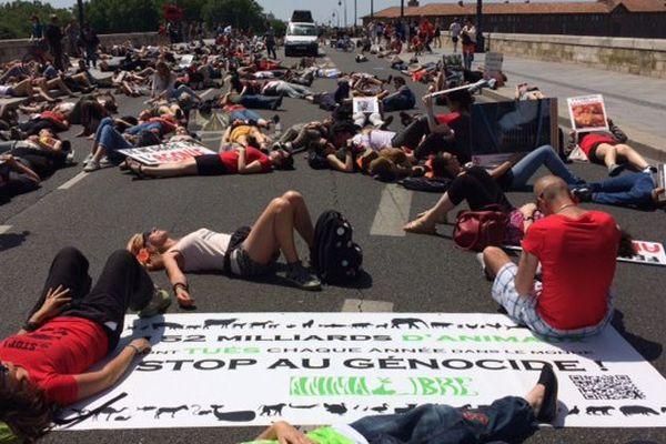 A Toulouse, les manifestants se sont couchés sur le Pont-Neuf.