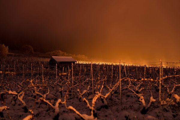 Dans les vignes du domaine Ratte à Arbois des bougies ont été allumées deux nuits durant pour contrer le gel.