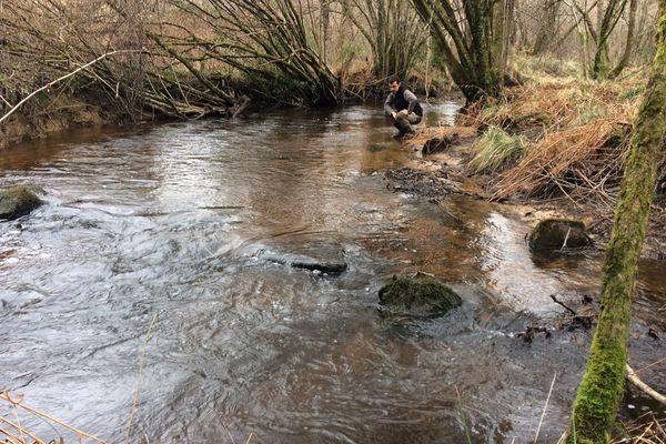 Les rivières sont des sites privilégiés de la biodiversité