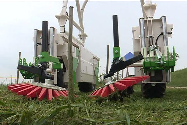 Le robot de la société Naïo technologie, capable de biner tout seul dans les rangs de vigne