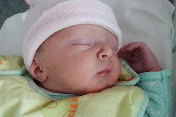 William est né a Nice après le sauvetage de sa famille à Saint Martin Vésubie